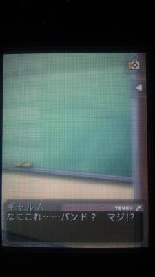 DSC_0512_20120424231949.jpg