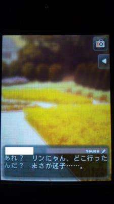 DSC_0529_20120415210750.jpg