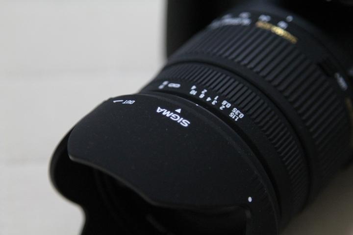 SLP3_20100704072906.jpg