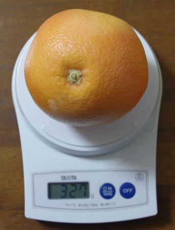 111225-ルビーグレープフルーツ