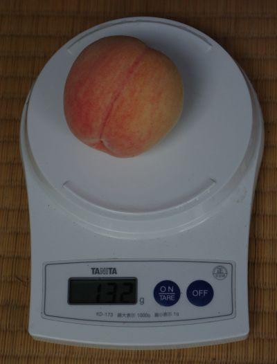 120728-ニュー太陽台桃