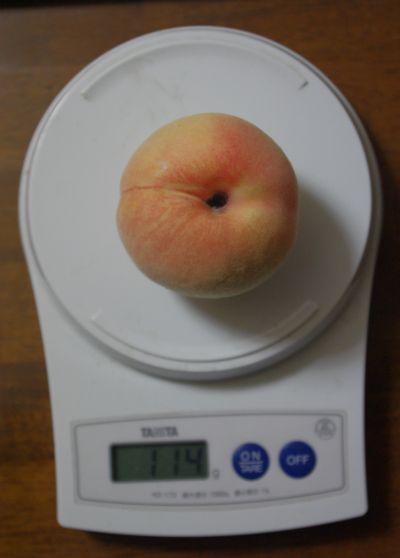 120922-桃水2