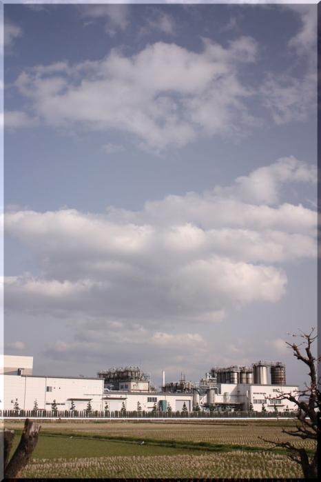 百梅園川辺12