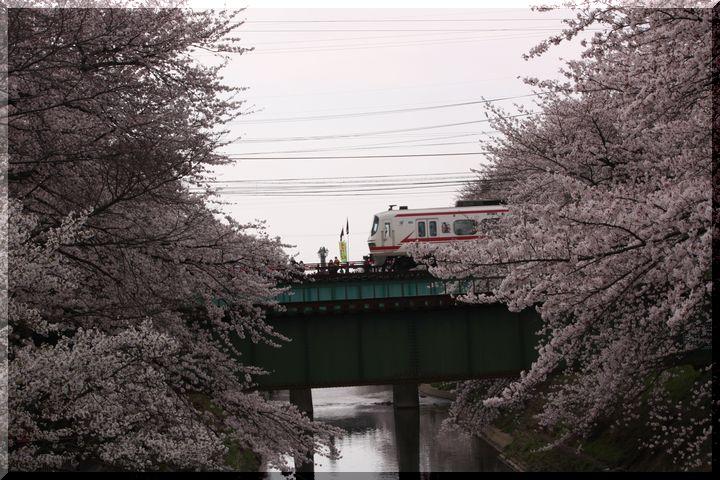 境川鉄道8