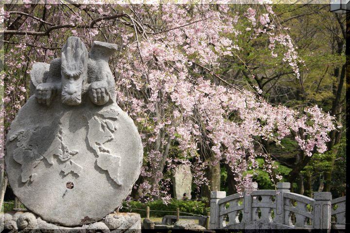 岐阜公園春8
