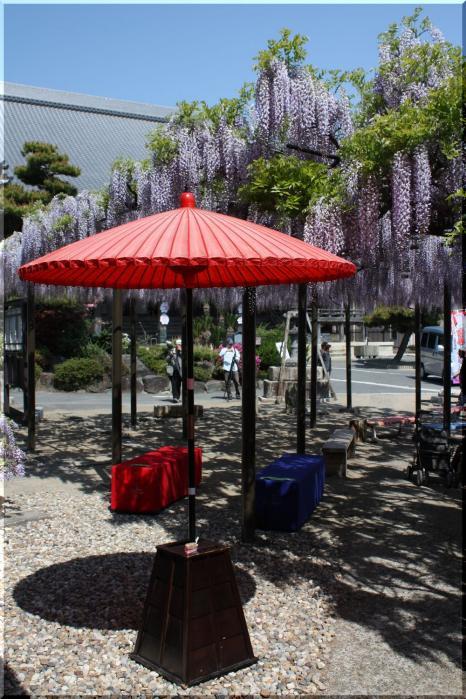 竹鼻和傘5