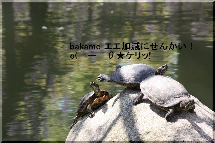 天王公園 フジ人8