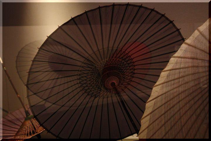 博物館和傘2