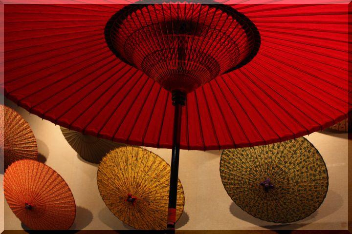博物館和傘3