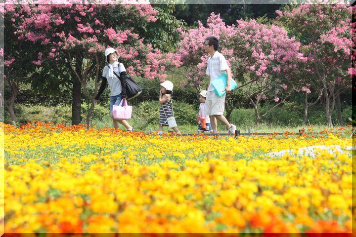 ~木曽三川公園9