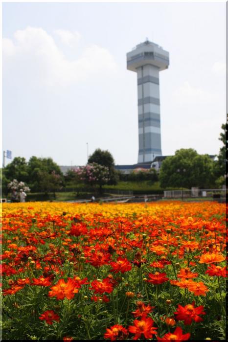 ~木曽三川公園14