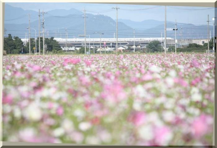 ~ 新幹線1