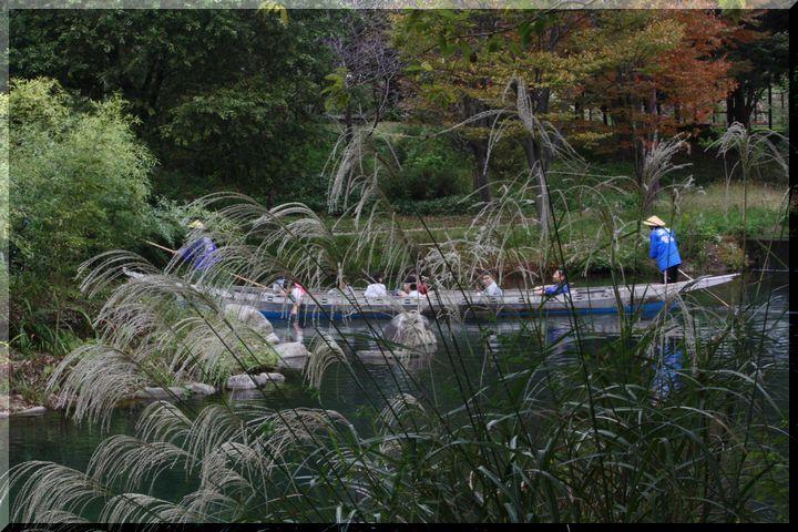 ~ 河川環境楽園5