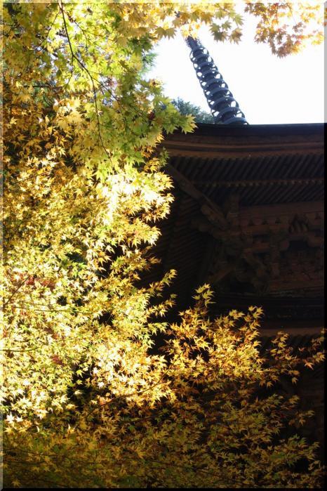 ~ 横蔵寺の紅葉4