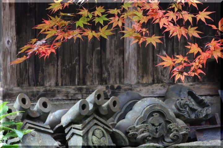 ~ 横蔵寺の紅葉6