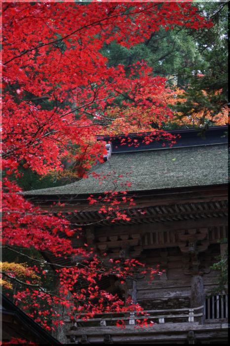 ~ 横蔵寺の紅葉7