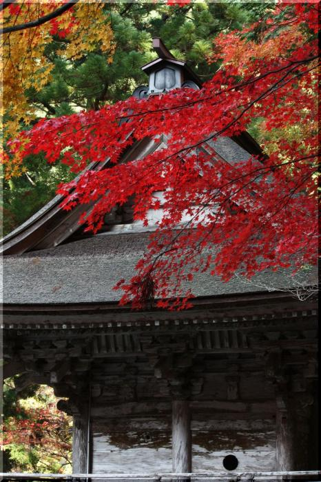 ~ 横蔵寺の紅葉9