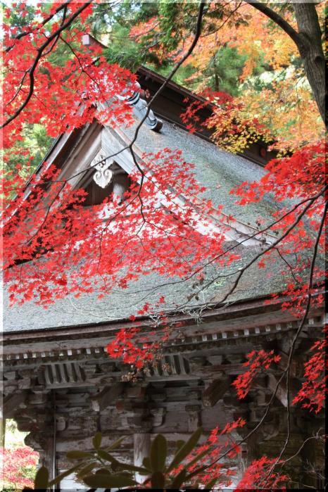 ~ 横蔵寺の紅葉11
