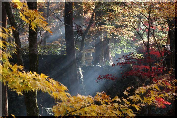 ~ 横蔵寺の紅葉15