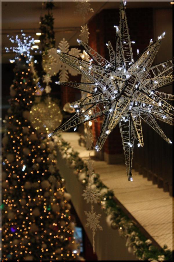 ~ クリスマス8