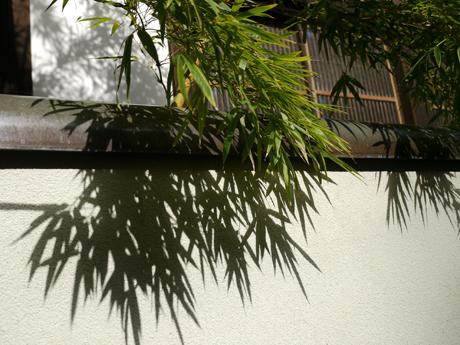 影絵のよyな竹