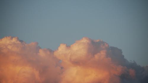犬に似ている雲2