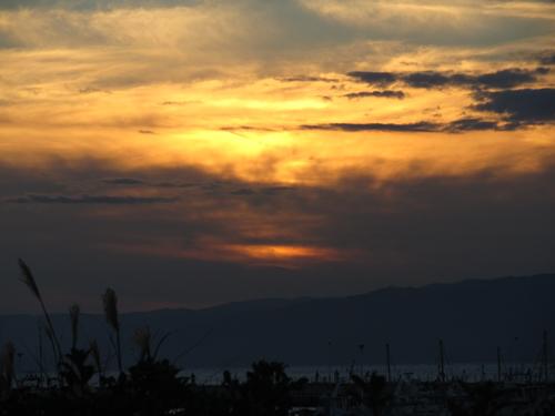 江ノ島の夜景 10日