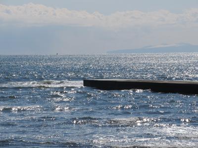キラキラと・・・輝いてる海