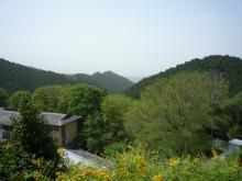 壷阪寺からの遠景