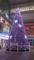 2013クリスマスツリー No.1