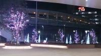 2013クリスマスツリー No.5