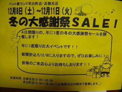 004_20121207180110.jpg