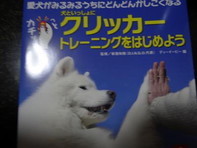 011_20121016183254.jpg