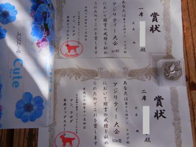 026_20121105104350.jpg