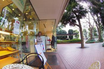 IMGP6748-junkospec.jpg