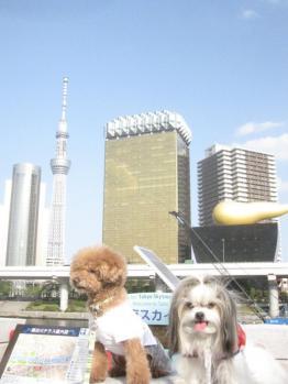 IMG_0097-201204.jpg
