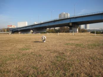 IMG_3324-201212.jpg