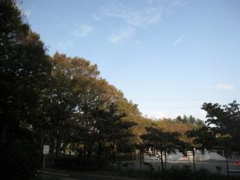 IMG_5750-201110.jpg