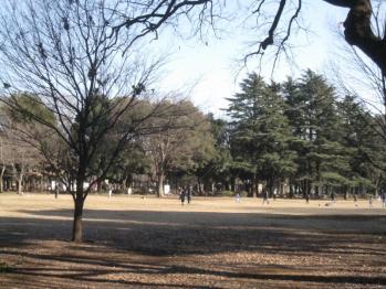 IMG_8277-201202.jpg
