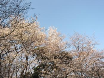 IMG_9257-201204.jpg