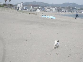 IMG_9708-201204.jpg