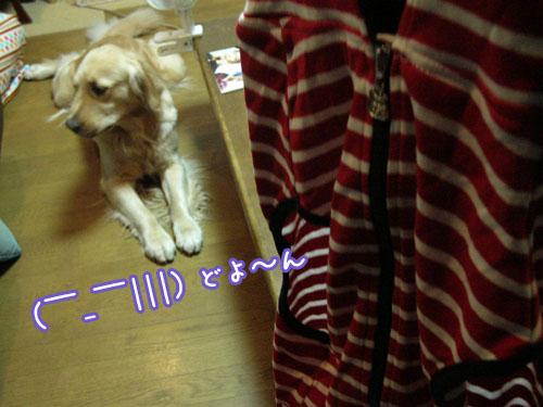 201009014.jpg