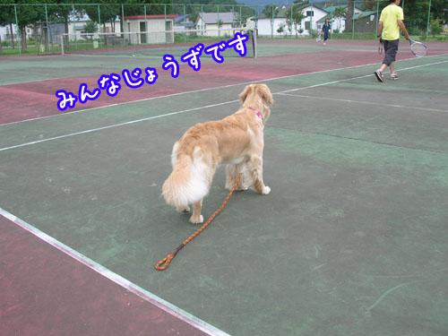 201009064.jpg