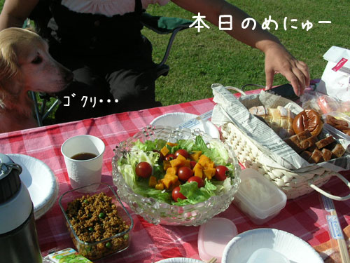 201009085.jpg