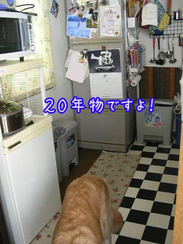 201009101.jpg