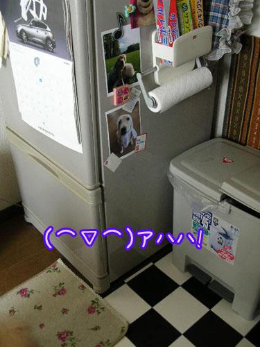 201009105.jpg
