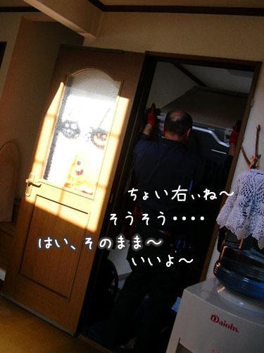 201010083.jpg