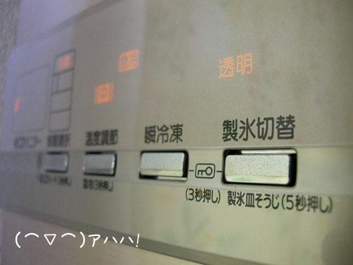 201010088.jpg