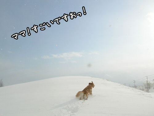201101019.jpg