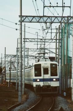 47060011.jpg